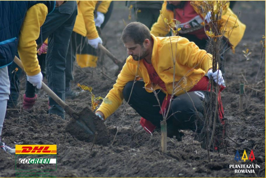 Global Volunteer Days in DHL – GoGreen Program