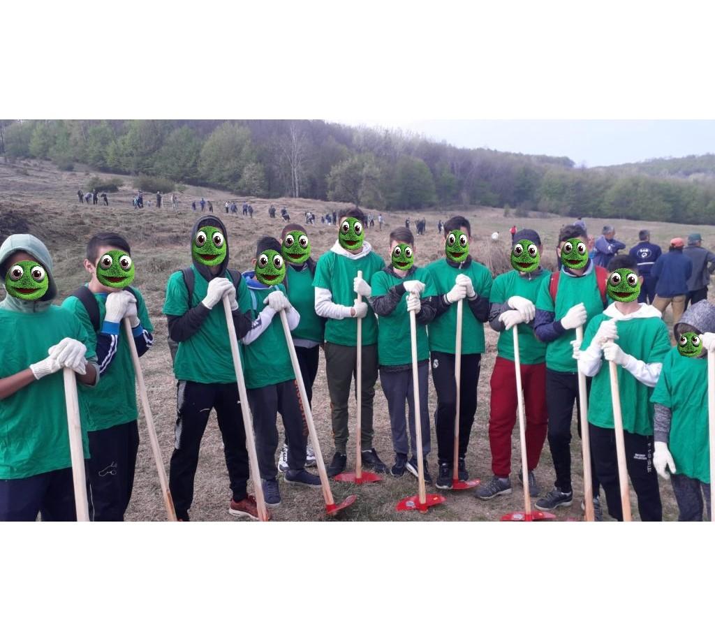 Educatie ecologica si de protectia mediului